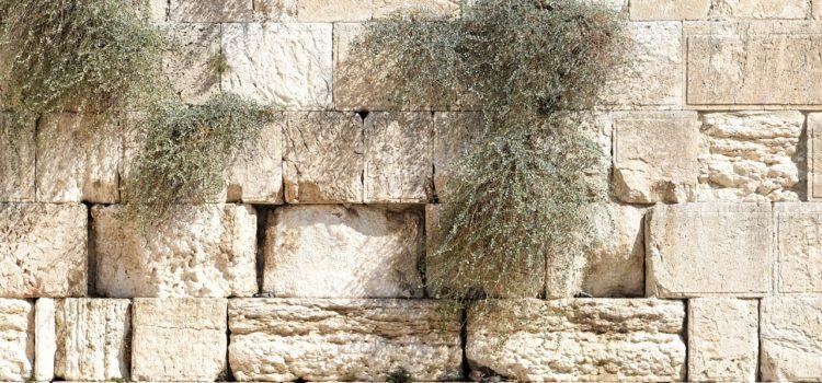 Small Plates : Episode 10: 1 Nephi 1:67-1574 RAV, 3:9-5:9 OPV